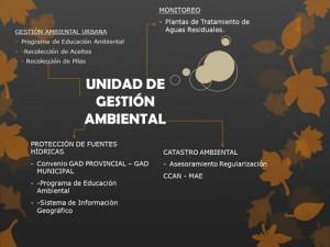 unidad de gestion ambiental
